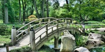 Landscape Features